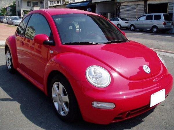Beetle 照片2