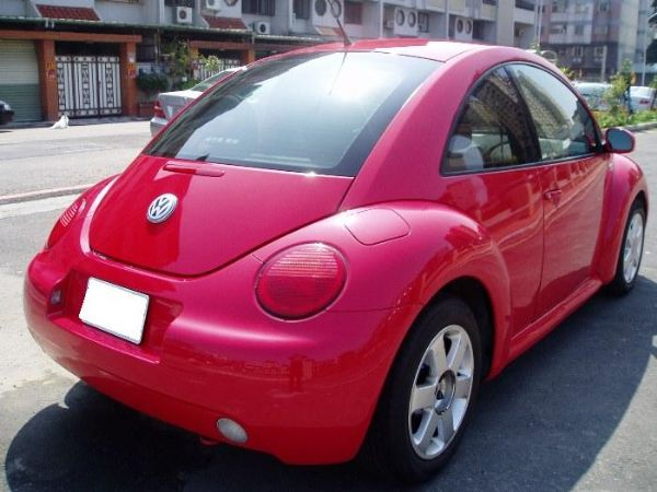 Beetle 照片3