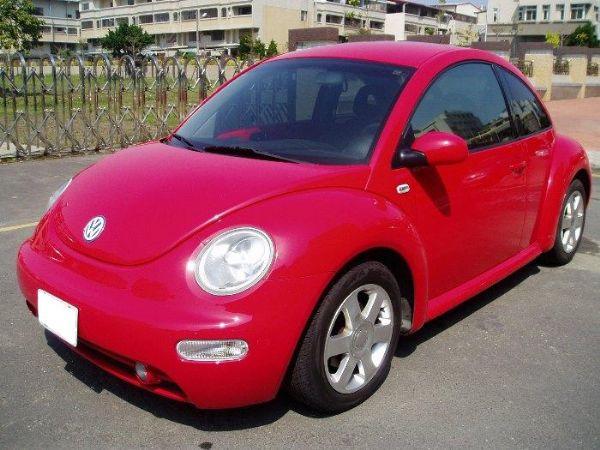 Beetle 照片1