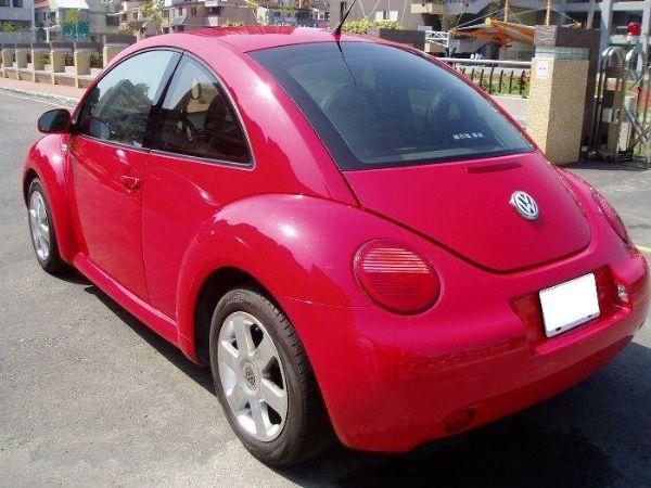 Beetle 照片4