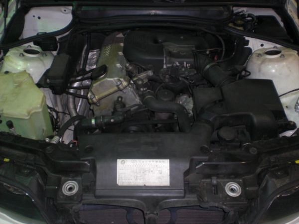 BMW 寶馬 318 照片8