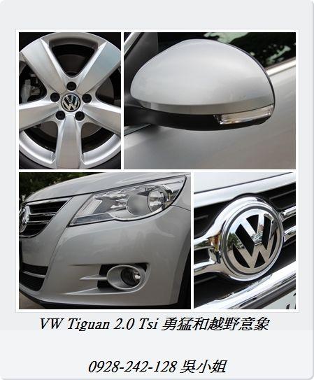 Tiguan 2.0 Tsi  照片6