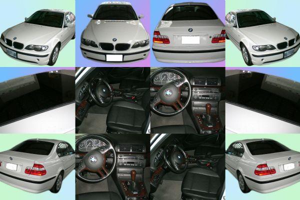 BMW 寶馬 318i 照片1