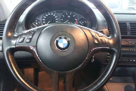 02~BMW 寶馬 3系列 320 照片6